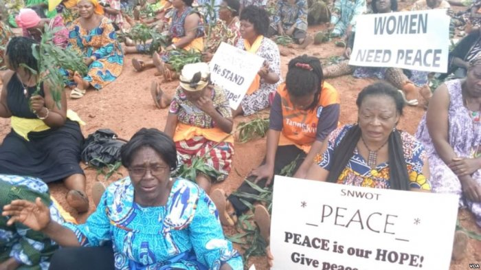 Anglophone Cameroon Needs Total Peace, Not Just for aDay!